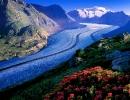 Ледник Алеч — самый длинный в мире
