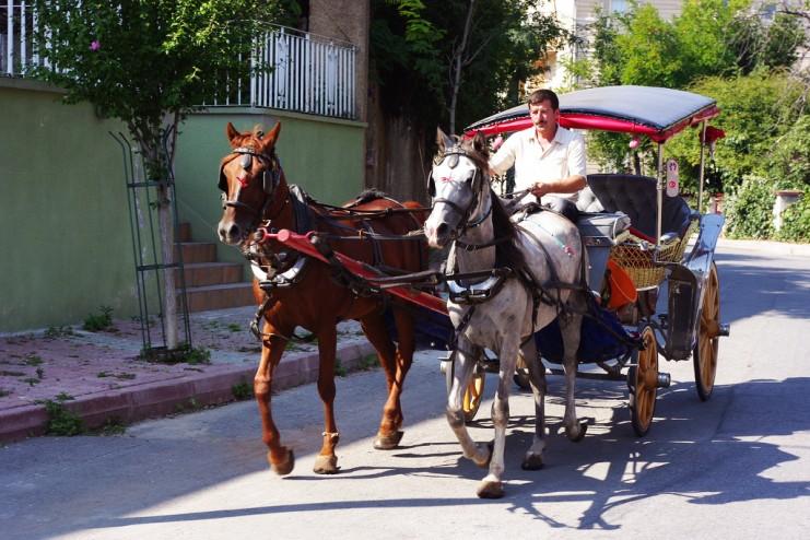 По Бургазу можно разъезжать в фаэтоне